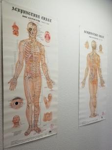Acupuncture-Charts-Masuda-Placerville-El-Dorado